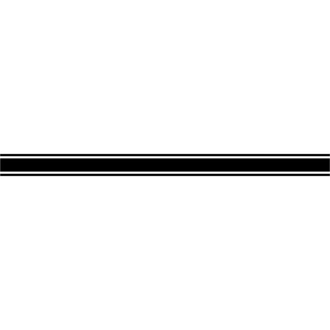 2 Filets Autocollants Transférables Cadox Noirs 300 X 10 Cm